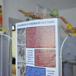 выставка мухзея в Чернокурье