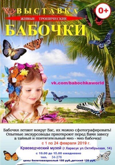 бабочки Карасук